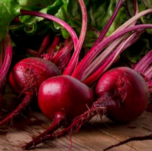 Organic Non-GMO Detroit Dark Red Beet