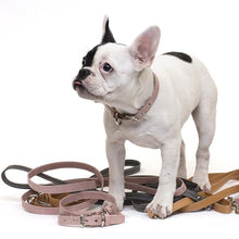 Load image into Gallery viewer, Paper Leather Pet Collar or Leash