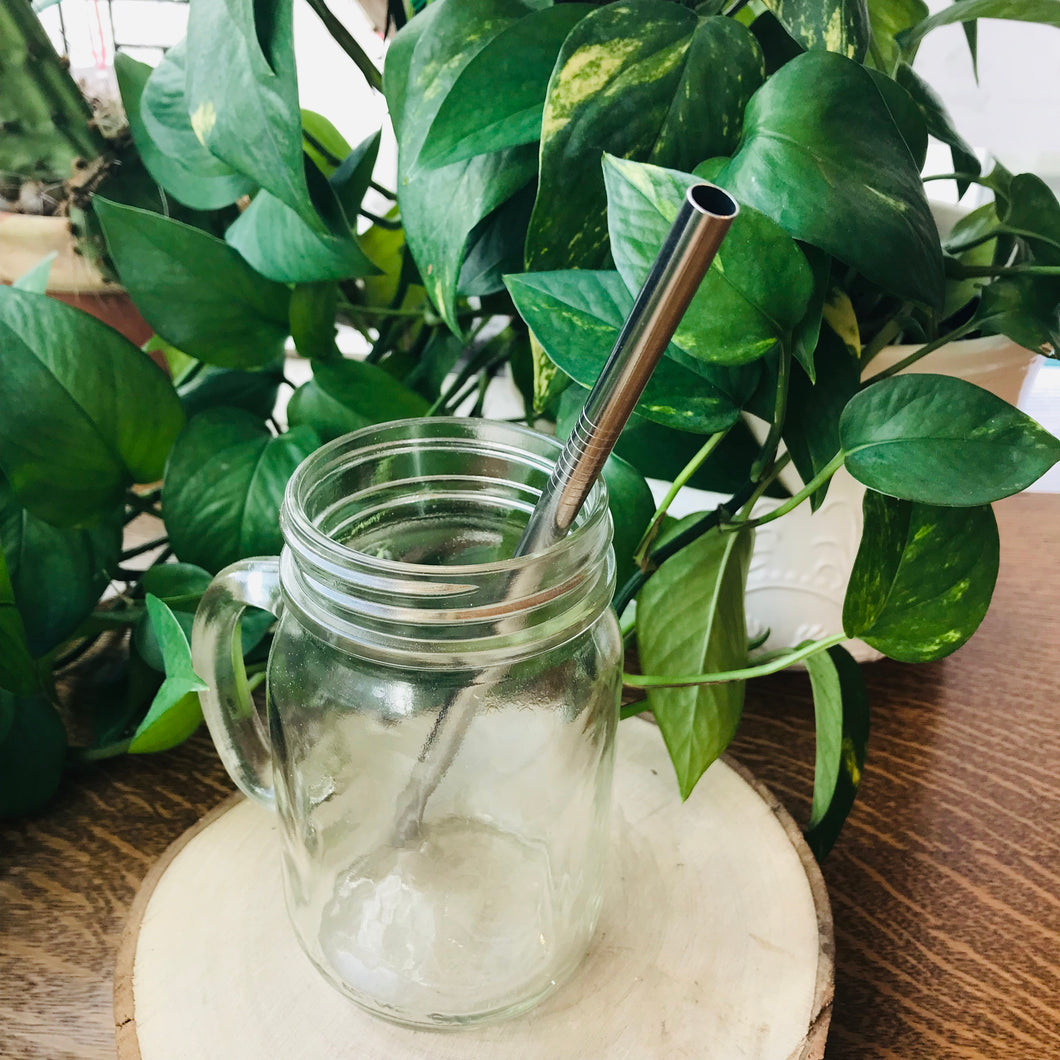 Stainless Steel Straight Smoothie Straw