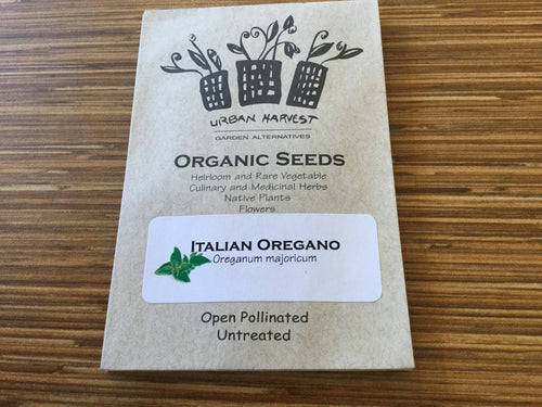 Italian Oregano organic seeds Urban Harvest