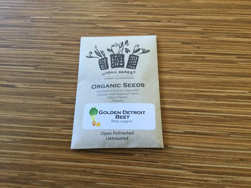 Golden Detroit Beet organic seeds Urban Harvest
