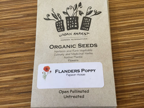Flanders Poppy organic seeds Urban Harvest