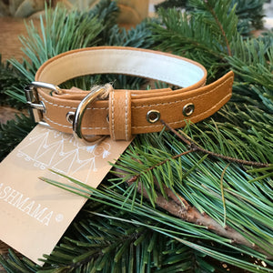 Paper Leather Pet Collar or Leash