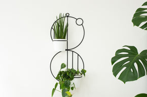 Billie Wall Plant Hanger