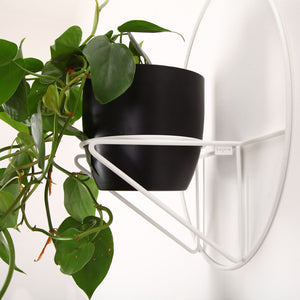 Luno Wall Plant Holder Black