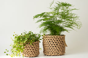Natural Paper Basket Medium