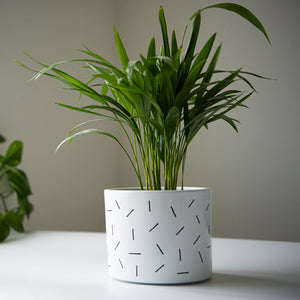 Dashing Pot