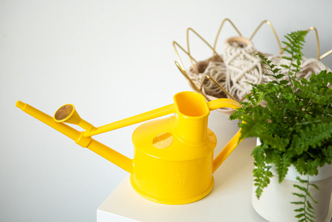 Watering Can by Haws  Yellow