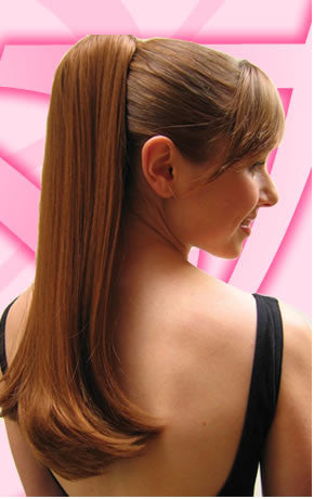 Dancers Long Straight Pony Tail