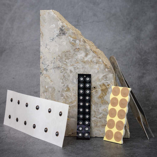The full Acupressure Kit, propped up against a slab of marble. From right to left: a sheet of body magnets, a sheet of ear seed, a sheet of acupressure dots, and a pair of tweezers.