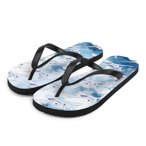 Cool Private Jet Flip-Flops