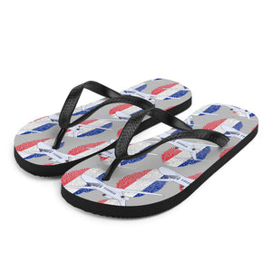 France - Cool Private Jet Flip Flops