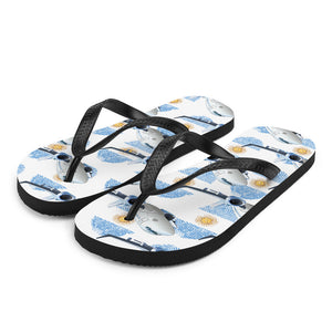 Argentina - Cool Commercial Aircraft Flip Flops