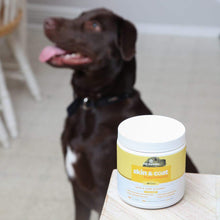 Load image into Gallery viewer, SoftSupps™ USA Omega 3 For Dogs Skin & Coat Soft Chew Supplements