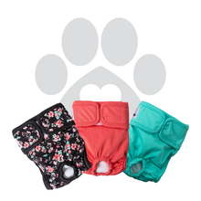 Load image into Gallery viewer, RETAILER EXCLUSIVE - Bella & Calvin Collection® Washable Dog Diapers (3 Pack) - BELLA