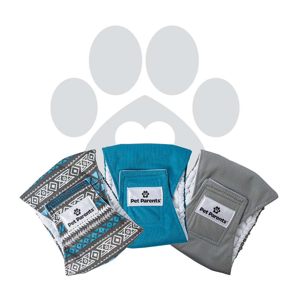 RETAILER EXCLUSIVE - Bella & Calvin Collection® Washable Dog Belly Bands (3 Pack) - WARRIOR