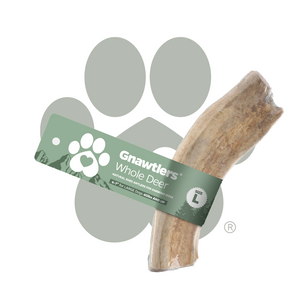 Gnawtlers® | USA Premium Deer & Elk Antlers For Dogs - WHOLE DEER