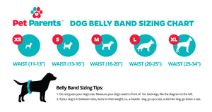 pet parents dog belly band sizing chart