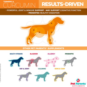 SoftSupps® Turmeric For Dogs Soft Chew Supplements