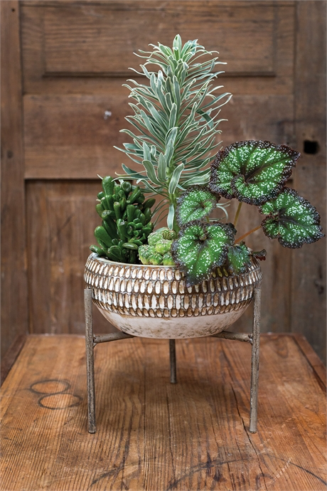 Xander Plant Stand