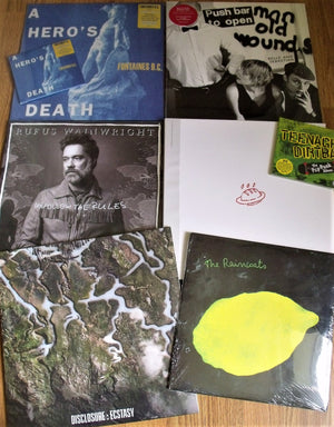 New In - Fontaines DC, Belle & Sebastian, Romare, DMA's & More
