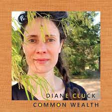 Diane Cluck - Common Wealth - New 10
