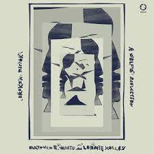 Matthew E White and Lonnie Holley - Broken Mirror: A Selfie Reflection - New CD