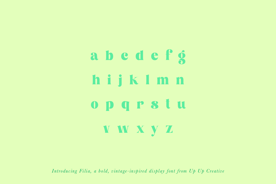 Filia Serif Display Font