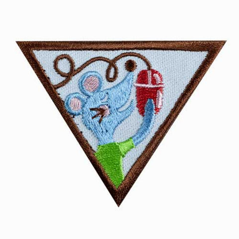 Girl Scouts Brownie Computer Expert Badge - basicsclothing
