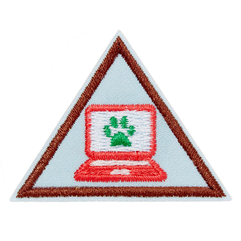 Girl Scouts Brownie Cybersecurity Safeguards Badge - basicsclothing