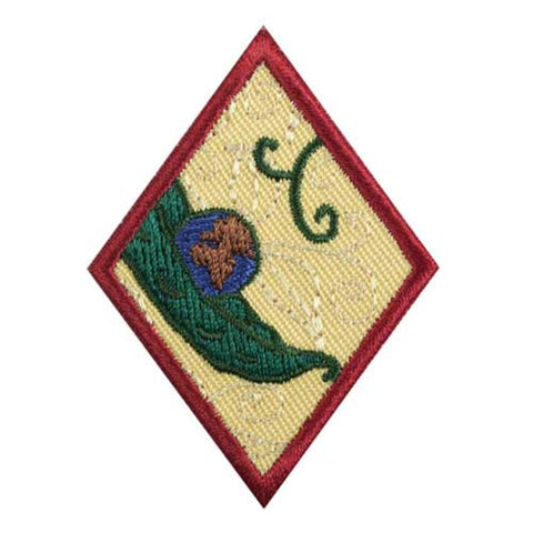 Girl Scouts Cadette New Cuisines Badge - basicsclothing