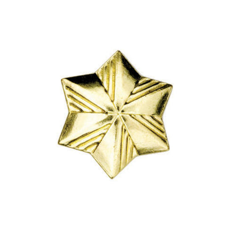 Girl Scouts Membership Star Pin