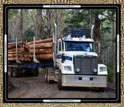 Big Logging Truck Panel