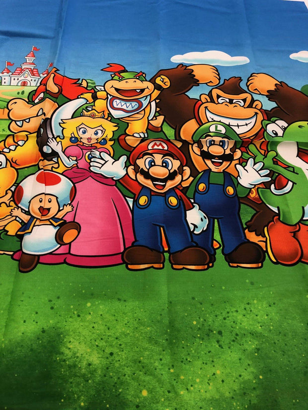 Mario and friends Panel
