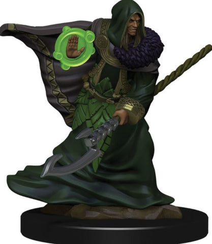 Dungeons & Dragons Miniatures: Icons of the Realms - Elf Druid (Male)