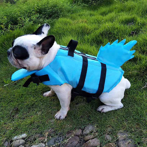 Dogs Swimming Suit