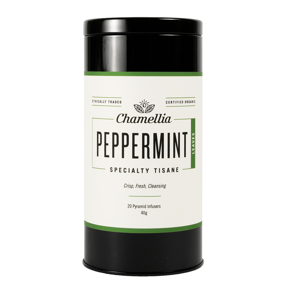 Peppermint | Pyramids x20 - You Brewtea