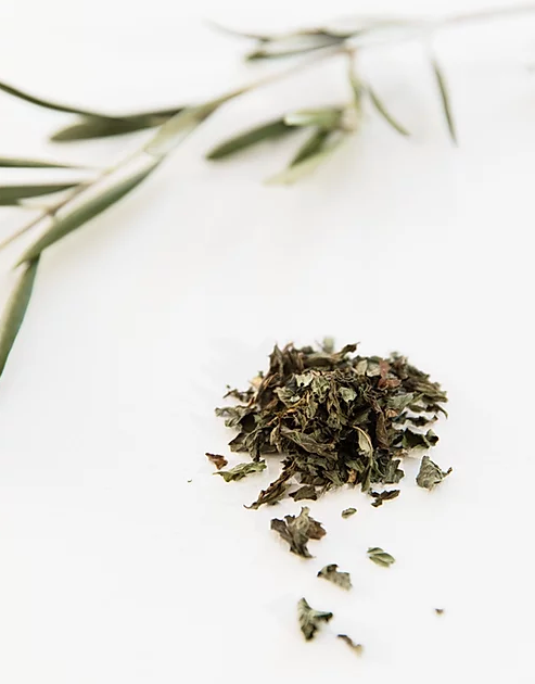 Minty Tea | Loose Leaf - You Brewtea