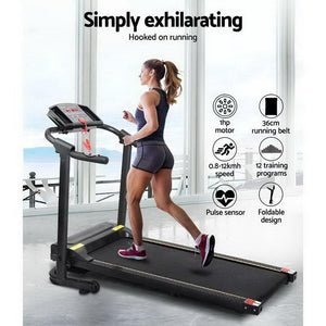 Treadmill, Electric, 12 Speed Levels