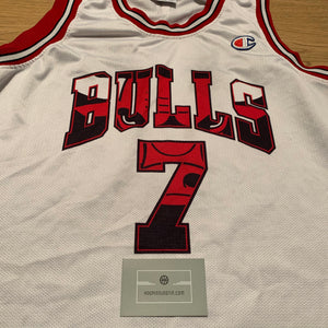 Ben Gordon Chicago Bulls Champion Jersey
