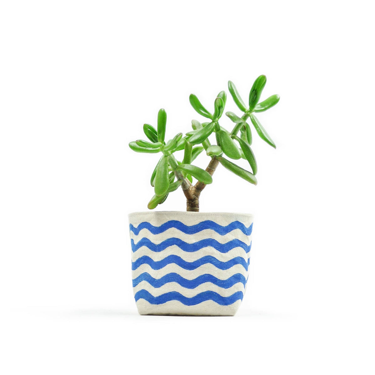 Wavy Line Blue Canvas Planter—4""