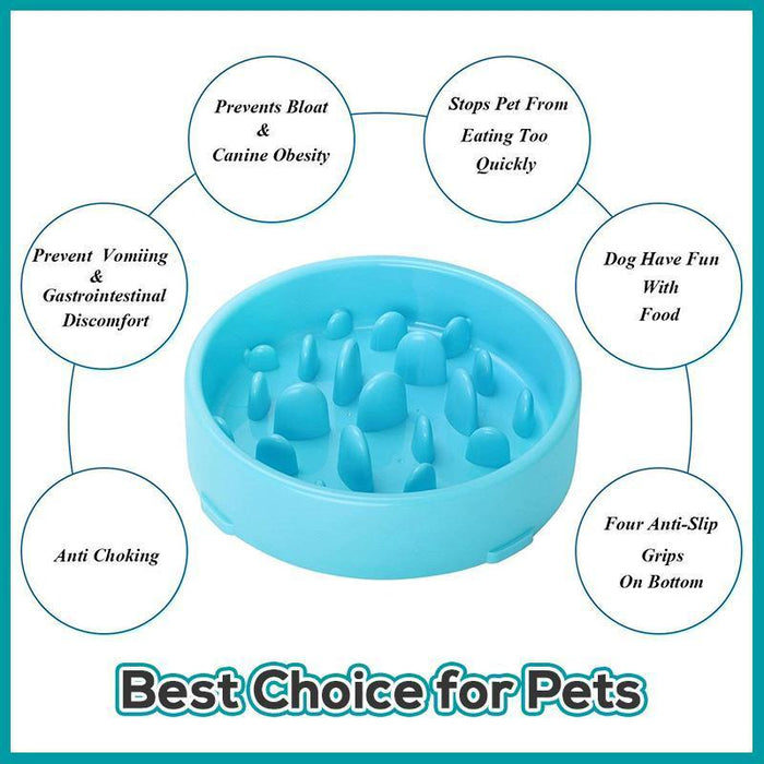 Pet Anti-Choke Bowl