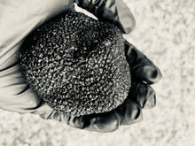 Load image into Gallery viewer, Foraged Black Truffle Vinegar