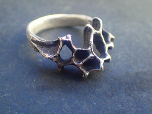 Honeycomb ring. Silver ring made from Real honeycomb