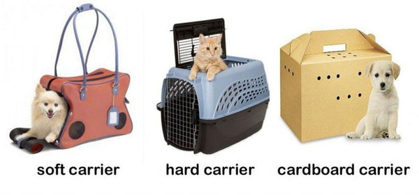 three types of carriers