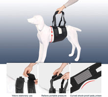 Load image into Gallery viewer, Ownpets Dog Lift Harness (XL Size), Adjustable Dog Support Rehabilitation Sling with Handle Sleeve, Ideal for Aged Dogs, Disable Dogs & Dogs Needing Help with Mobility or Balance