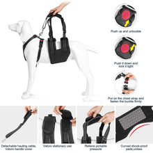 Load image into Gallery viewer, OWNPETS Dog Support Harness Set ( Large ), Rehabilitation Sling for Dogs Needing Help with Mobility or Balance
