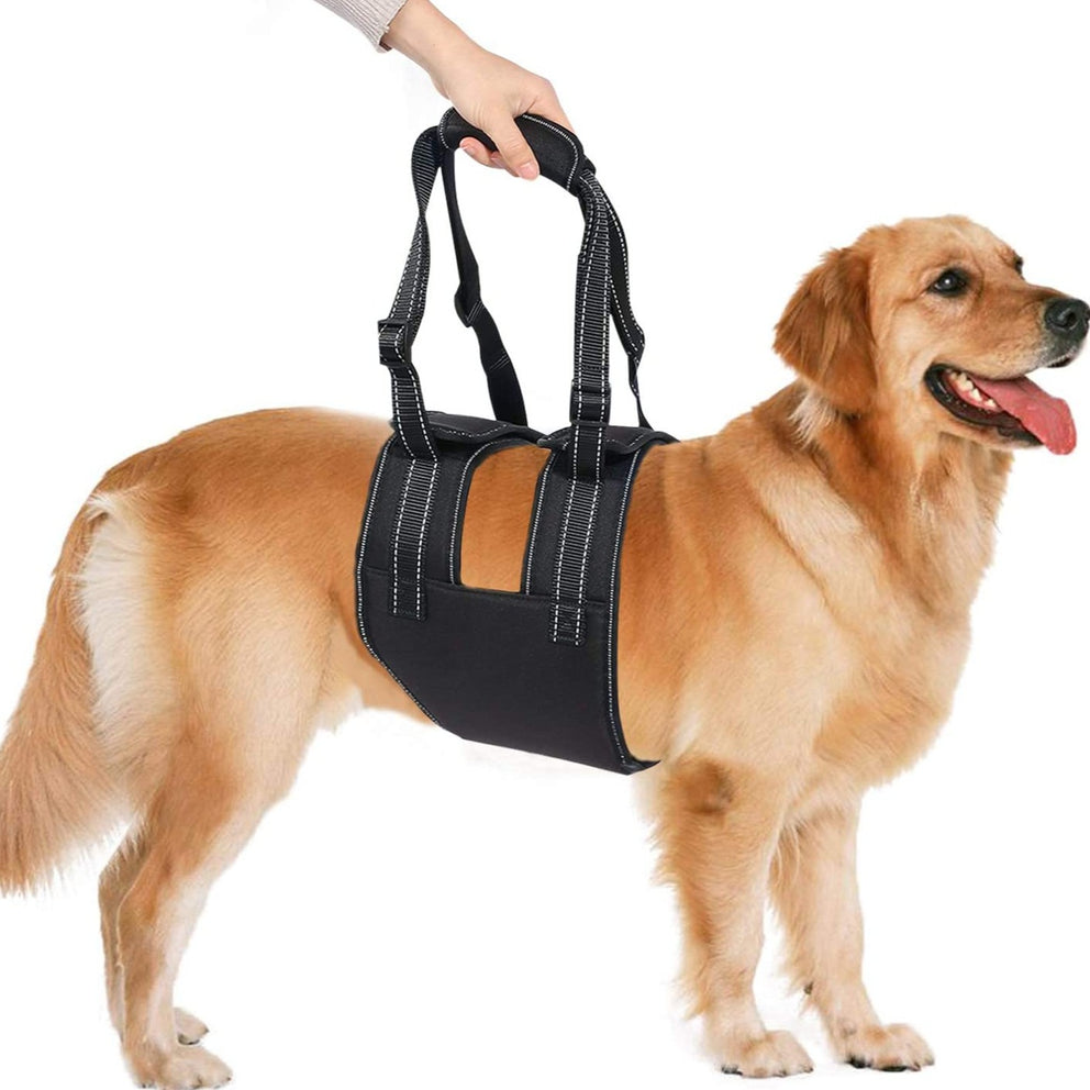 Ownpets Dog Lift Harness (XL Size), Adjustable Dog Support Rehabilitation Sling with Handle Sleeve, Ideal for Aged Dogs, Disable Dogs & Dogs Needing Help with Mobility or Balance