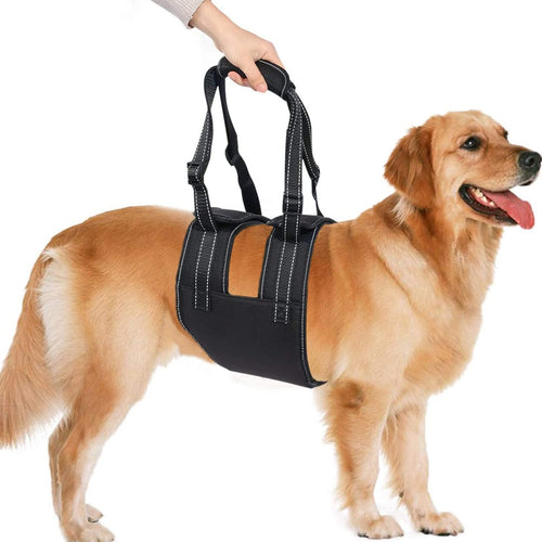 Ownpets Dog Lift Harness (L Size), Adjustable Dog Support Rehabilitation Sling with Handle Sleeve, Ideal for Aged Dogs, Disable Dogs & Dogs Needing Help with Mobility or Balance