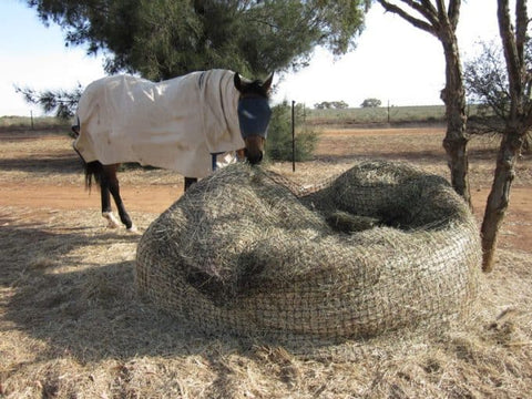 Two-thirds eaten GutzBusta® Round Bale Hay Net with a horse eating